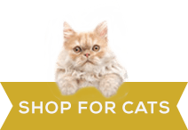 shop-for-cats