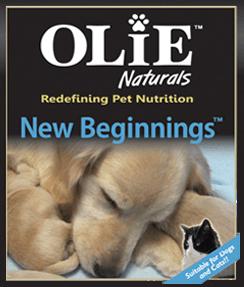 new beginnings olie