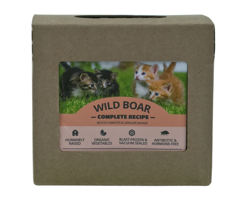 RDBK Wild Boar Complete for Cats