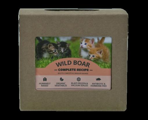Red Dog Cat Wild Boar
