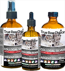 Colloidal Silver by True Raw Choice
