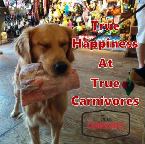 dog raw bone true carnivores