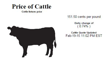 Cattle Price
