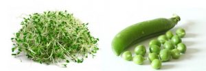 alfalfa peas