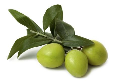 Cat Olives Gif