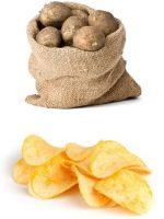 Fresh Food vs Processed Pet Food? You Decide