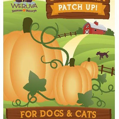 Weruva Pumpkin Patch Up