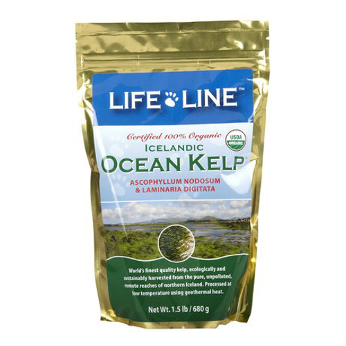 Lifeline Organic Kelp