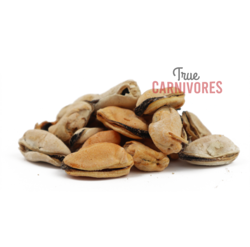 dehydrated green lipped mussels