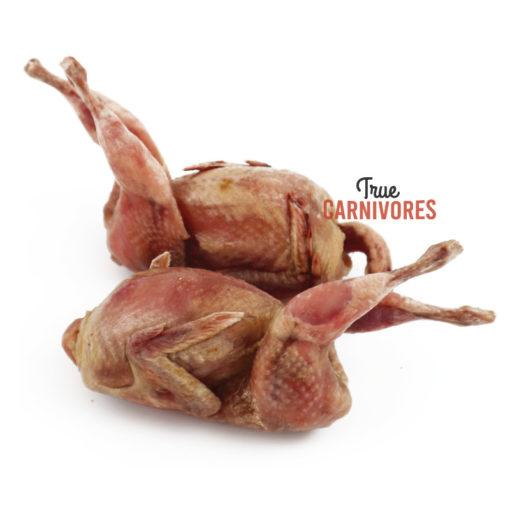 naked quail