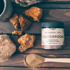 5 Mushroom Blend