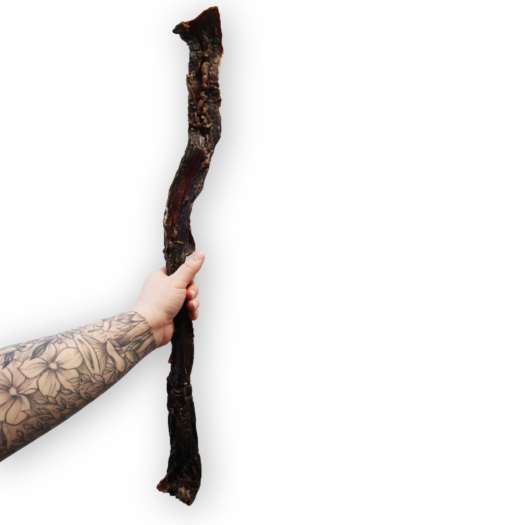long beef jerky stick